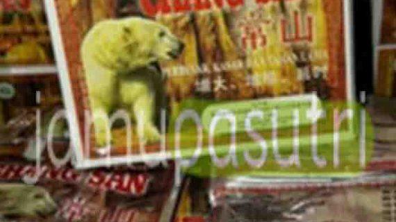 Agen Obat Kuat Chang San Cap Beruang Untuk Stamina Pria