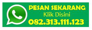 Agen Obat Kuat Procomil Spray Di Palembang