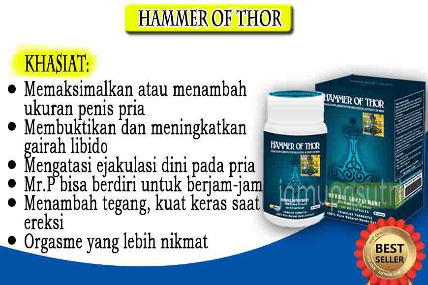 Agen Hammer Of Thor Asli Di Jambi