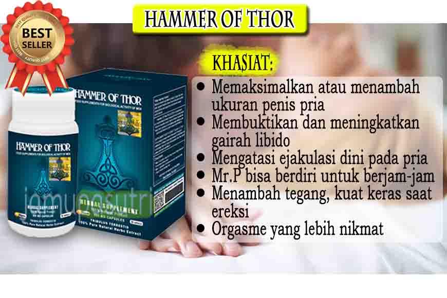 Agen Hammer Of Thor Italy Di Cikarang